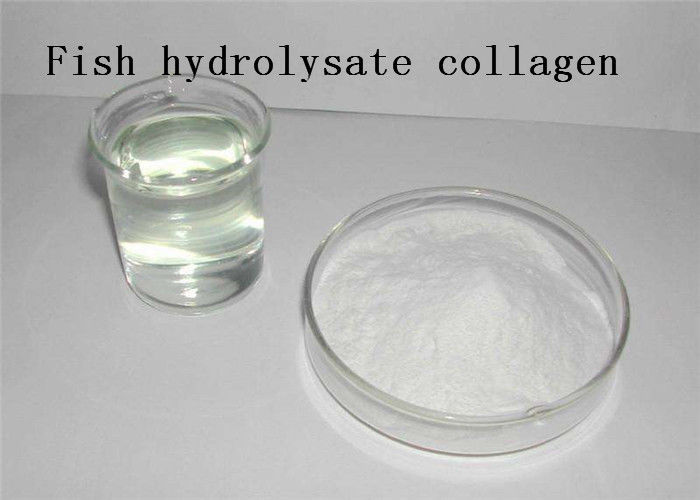 Frozen Food Collagen Hydrolysate Powder 9064 67 9  Fish Scale Dietary Supplements